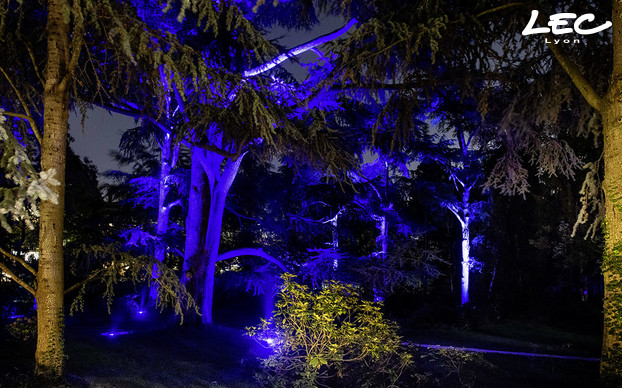 <p>LEC 5716 Allevard lights are installed at the base of large trees and in the bamboo forest.</p>